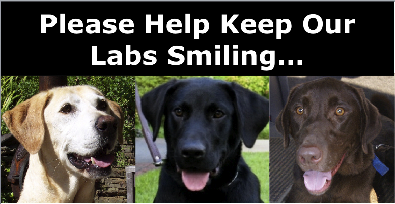 Please Help Keep our Labs Smiling...