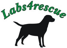 Labs4rescue logo