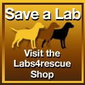 Save a Lab - Visit the Labs4rescue Shop